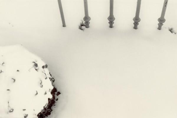 snow|2002